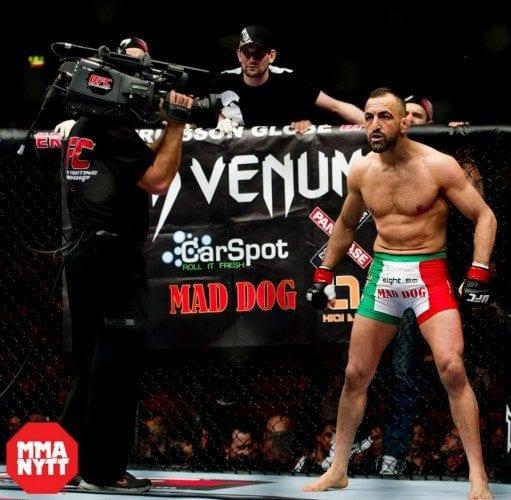 Exklusivt om UFC Stockholm 2013 – Reza Madadi och Chris Spång går match, Sirwan Kakai inte aktuell för UFC-kontrakt, med mera