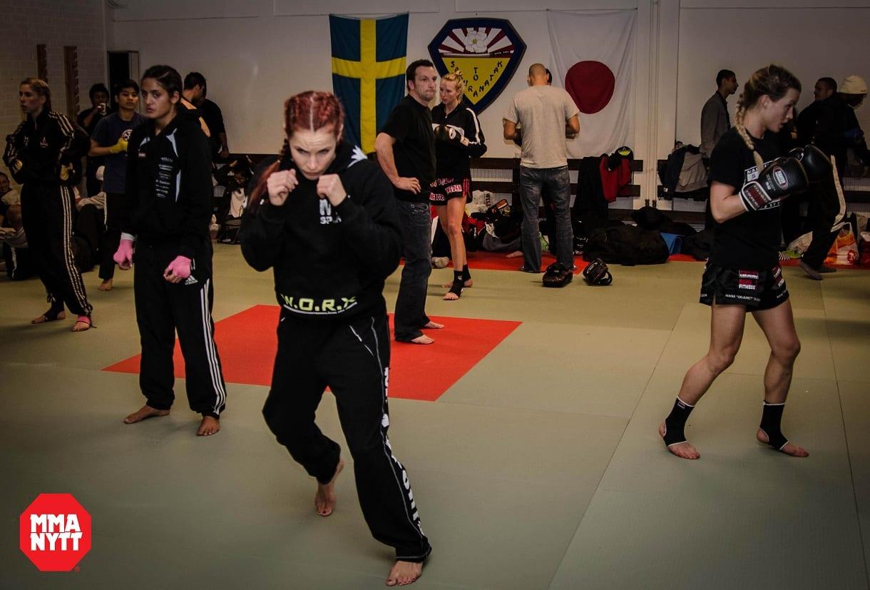 MMAnytt Lina Länsberg artikel Foto - Mattias Persson (5)