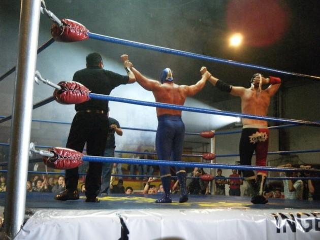 En UFC och The Ultimate Fighter-veteran hoppar över till WWE