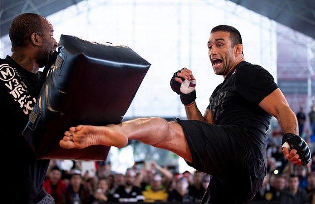 Uppgifter: Fabricio Werdum vs. Ben Rothwell på gång inför UFC 211
