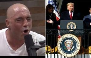 Donald Trump UFC 244
