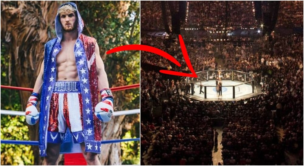 Logan Paul MMA