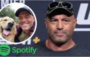 Joe Rogan Spotify (© Gary A. Vasquez-USA TODAY Sports)