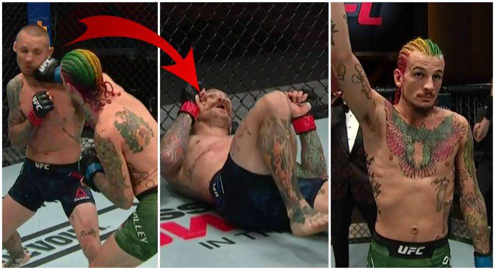 Sean O'Malley UFC 250 MMA