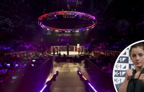 MMA-organisationen BRAVE kommer till Sverige