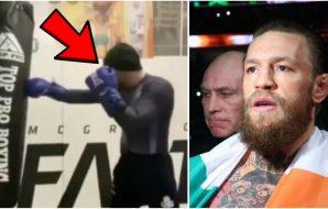 Conor McGregor Video fansen MMA Boxning