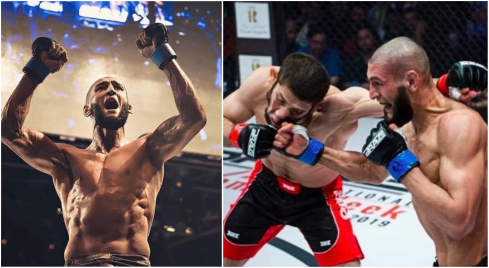 Khamzat Chimaev UFC MMA Borz