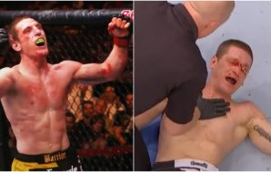Mac Danzig (Screenshot UFC)