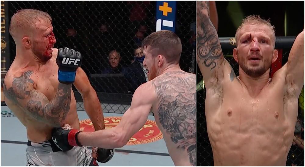 TJ Dillashaw UFC MMAnytt