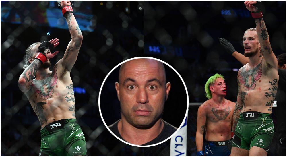 UFC 264 Sean O'Malley