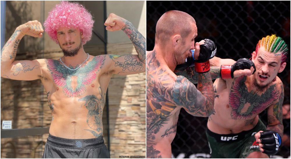 UFC, Sean O'Malley