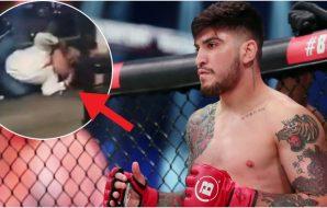 Dillon Danis strangled Bellator MMA MMAnytt