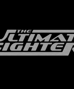 The_Ultimate_Fighter_Metal_by_TechII-1