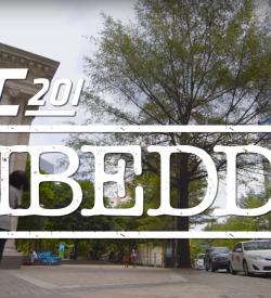 UFC Embedded 201