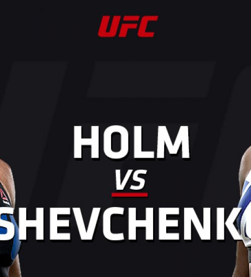 UFC on FOX 20 Holm vs Shevchenko